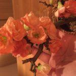 お花〜❀✿